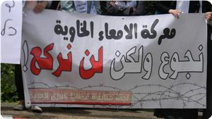 images_News_2013_06_13_hunger-strikers-0_300_0[1]
