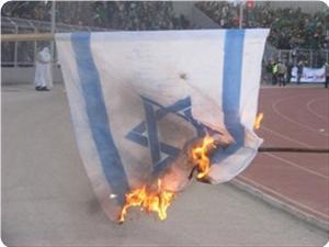 images_News_2013_06_13_israeli-flag-on-fire_300_0[1]