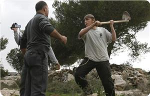 images_News_2013_06_18_settler-attacks-palestinian-farmer_300_0[1]