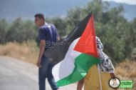 June 15 2013 Violent clashes in Latrun Valley West of Ramallah - Photos by Raya - 13