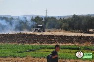 June 15 2013 Violent clashes in Latrun Valley West of Ramallah - Photos by Raya - 14