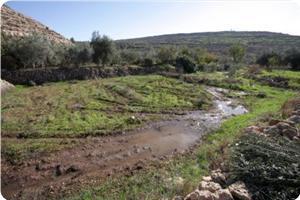 images_News_2013_07_08_wadi-fukin_300_0[1]