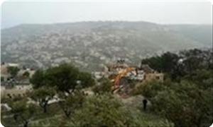 images_News_2013_09_23_nablus_300_0[1]