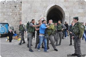 images_News_2014_08_04_Israeli-violations_300_0